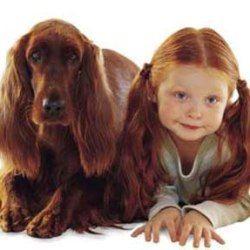 10-річні діти краще за всіх розуміють собак, з`ясували вчені