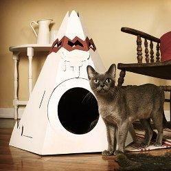 25 найцікавіших дизайнерських ідей для вашої кішки