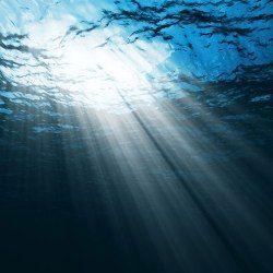 6 дивних і непояснених звуків океану
