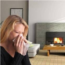Алергени в вашому домі: що потрібно знати