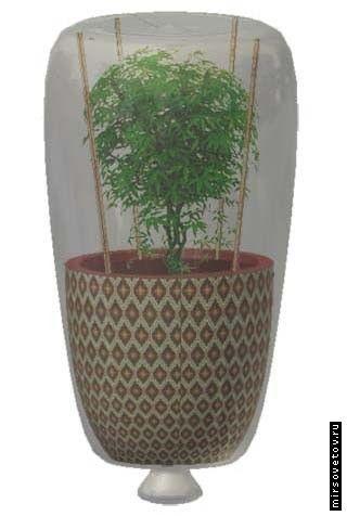Автоматичний полив рослин