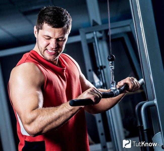 Тренування на збільшення росту м`язової маси
