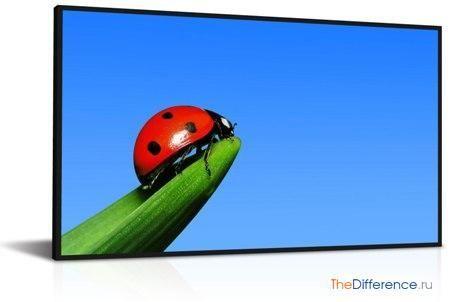 відміну TFT від LCD