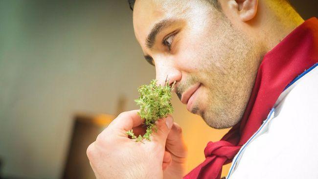 Як стати хорошим кухарем: з чого почати