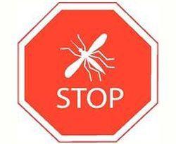 Як позбутися від комах в будинку
