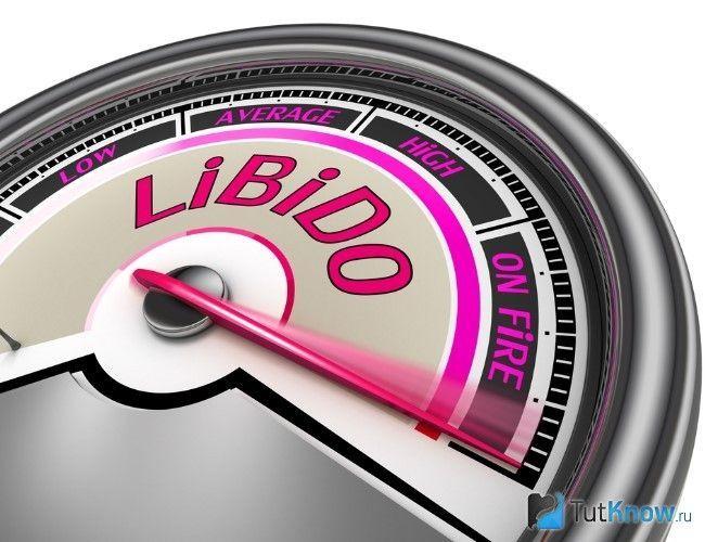 Схематичне зображення датчика лібідо