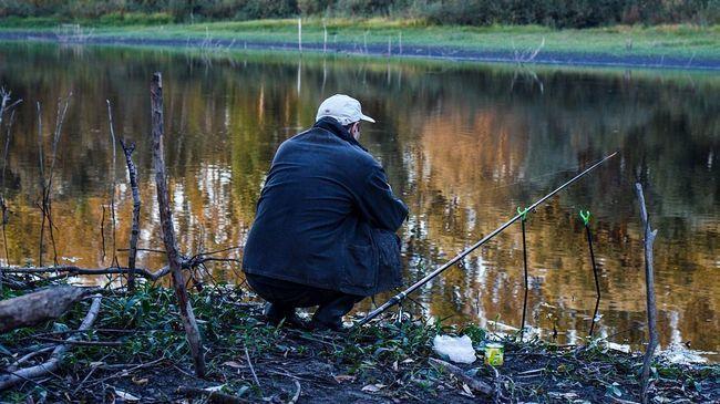 Як правильно варити горох для риболовлі: 5 способів