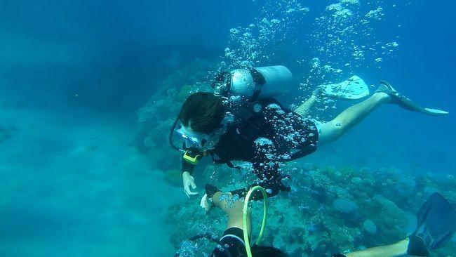 Як вибрати рушницю для підводного полювання: види і характеристика