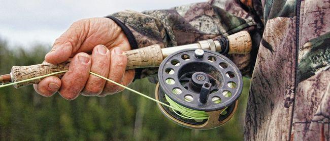 Як ловити щуку: секрети успішного рибалки