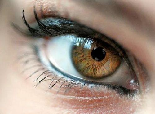 Eye-character-logo.jpg