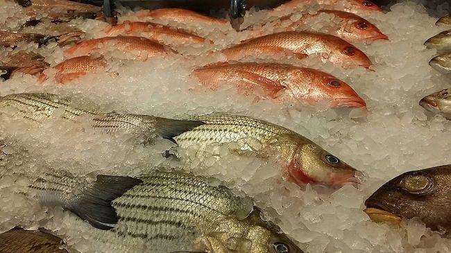 8 порад, які допоможуть вибрати свіжу рибу на ринку або в магазині
