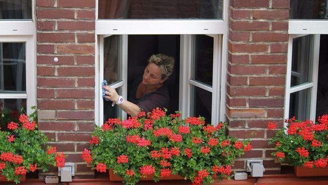 Як швидко і якісно помити вікна без розлучень