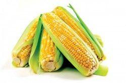 Як правильно варити кукурудзу