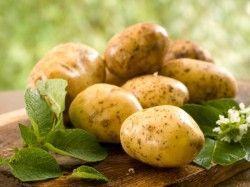 Як приготувати картопляне пюре