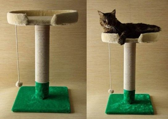 Як зробити когтеточку для кішки своїми руками?