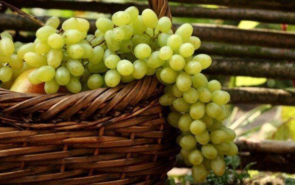 Виноград в кошику