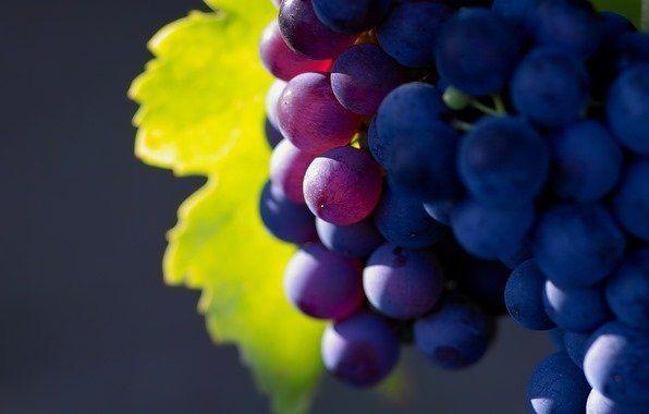 гарний виноград