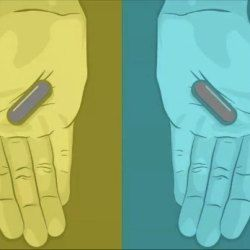 Якого кольору таблетки і інші ілюзії, які спотворюють реальність