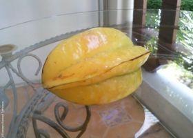 Карамболь - фрукт зірка