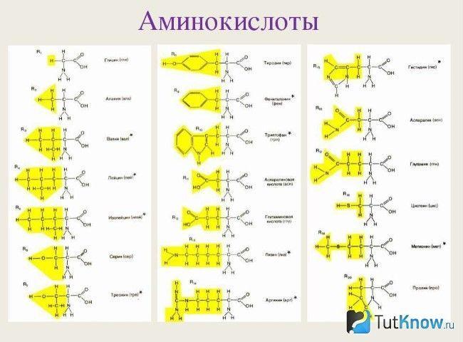 формули амінокислот