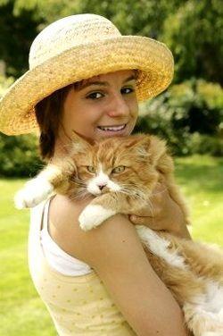 Кішки: вибір і догляд за ними