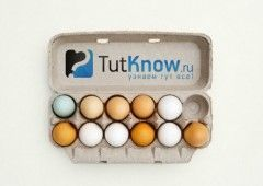 Курячі яйця: користь чи шкода для організму?