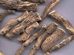 Лікувальні властивості кореня аїру