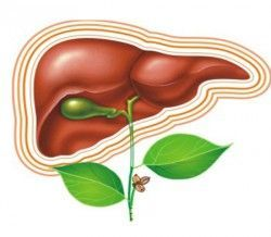 Лікування хронічного гепатиту
