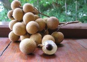 Лонган (lamyai) - фрукт