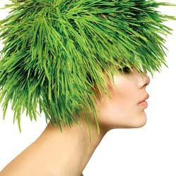 Місячний календар стрижки волосся на травень 2015
