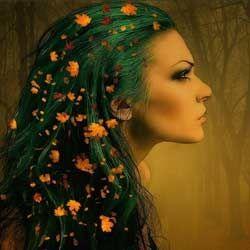 Місячний календар стрижки волосся на жовтень 2015