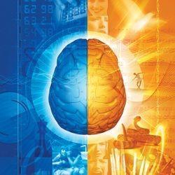 Міфи про мозок, в які ми продовжуємо наполегливо вірити