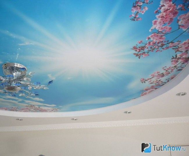 Натяжна стеля «Небо з гілками квітучих дерев»