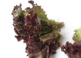 Оакліф: дубовий салат