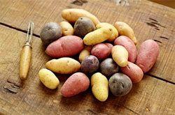 Овочеві дієти для схуднення