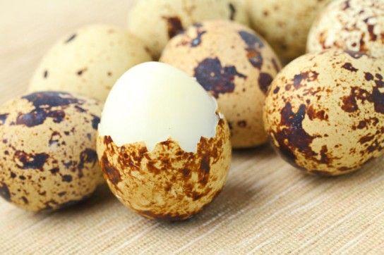 Перепелині яйця: користь і шкода!