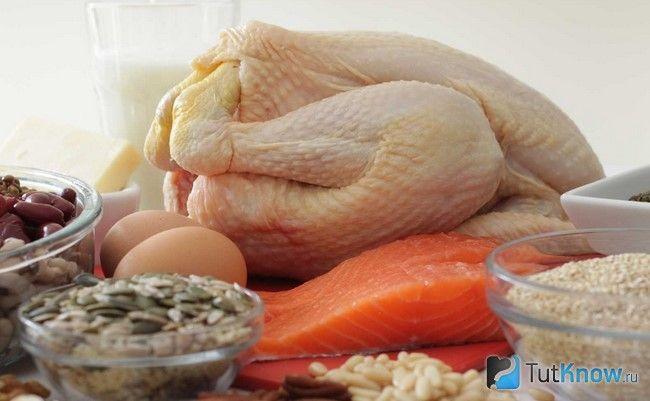 М`ясо, риба, яйця