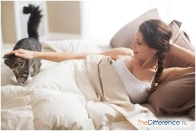 Чому кішка топче вас лапами