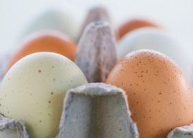 Чому кури несуть яйця з дефектами?
