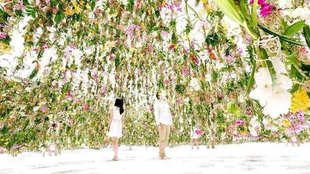 Рухомий квітковий сад