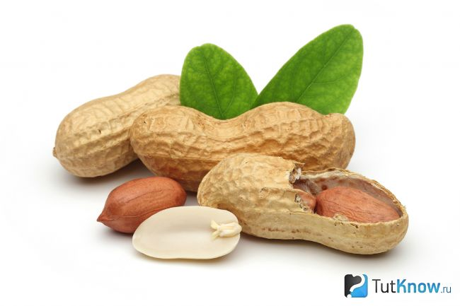 Користь і застосування бобових продуктів