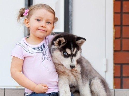 Породи собак для дітей