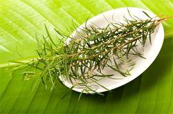 Застосування масла чайного дерева