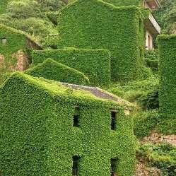 Природа захопила стару китайську село