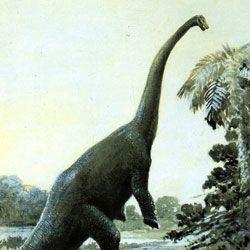 Розкрито секрети харчування травоїдних динозаврів