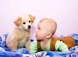 Дитина і домашні тварини