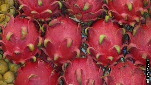 Рецепт фруктового салату з дракон-фрукта