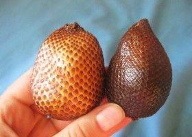 Салак і раків - зміїний фрукт країн азії