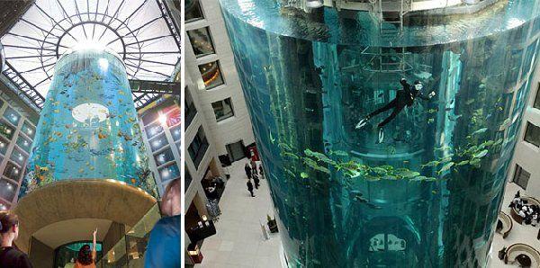 ліфт акваріум