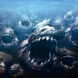 Найстрашніші риби-вбивці